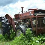新規就農の前に理想と現実を知るためにプチ農業期間の勧め