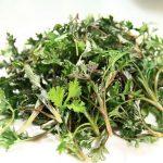 ヨモギの食べ方と効果|血行促進やデドックス作用だけではない効能
