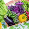 体質に合った食を摂取する食事法で健康維持|体質と栄養素の関係